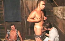 In the stables, two guys suck cock and one of them masturbates