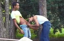 Black guy gets a blowjob in a park