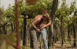 Gay teens kiss with passion in the orchard