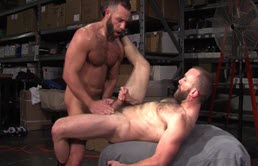 Muscular men suck each other's cock and they fuck in the ass