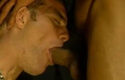 Passion et pipe avant de faire sex